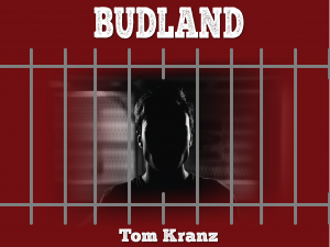 Budland wide cover